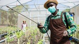 "MNB's Angola Fertiliser development ""a Project of National Importance"""