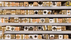 Sanankoro gold discovery drill program