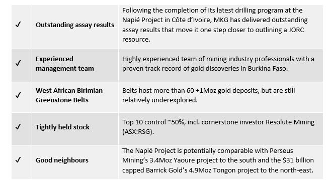 MKG's Outstanding Assays Allows it to Focus on the Big Gold Picture