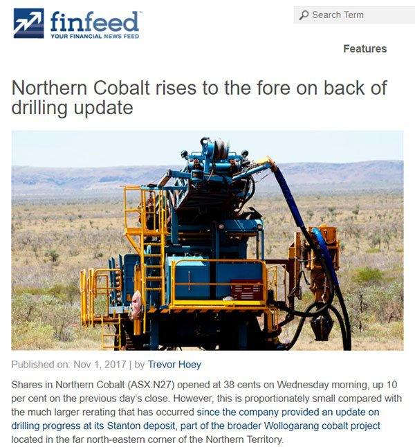 northern cobalt finfeed