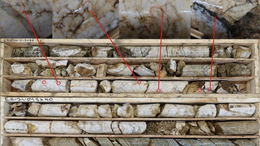 TMR reveals visible gold, summer drilling campaign has begun